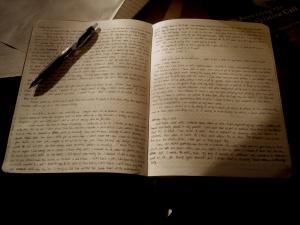 Heidi's journal